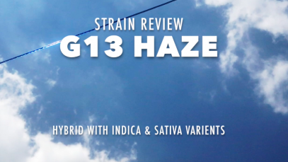 Strain-Review-G13-Haze-Thumbnail