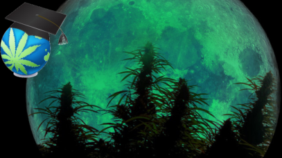 Moon-moonlight-Cannabis-branded-thumb1